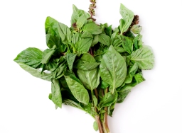 Fresh basil makes everything better…